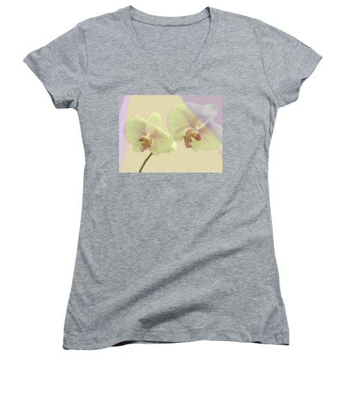 Morning Light Women's V-Neck T-Shirt (Junior Cut) by Karen Nicholson