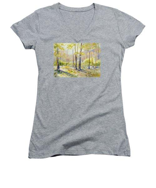 Morning Light - Spring Women's V-Neck T-Shirt (Junior Cut)