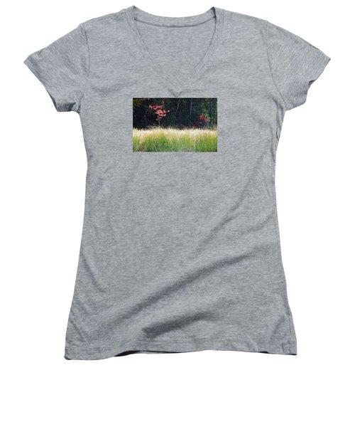 Morning Melody On Hopkins Stream Women's V-Neck T-Shirt (Junior Cut) by Joy Nichols