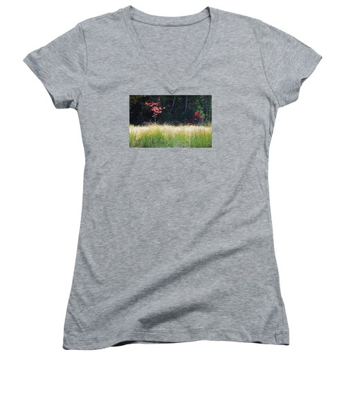Morning Melody On Hopkins Stream Women's V-Neck (Athletic Fit)