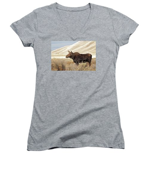 Morning Moose Women's V-Neck