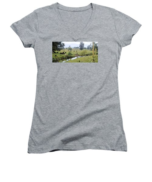 Morning On Coldwater Women's V-Neck (Athletic Fit)
