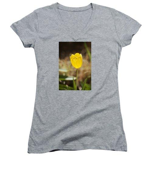 Morning Optimism Women's V-Neck T-Shirt (Junior Cut) by Morris  McClung