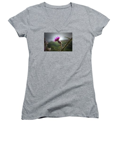 Morning Purple Thistle. Women's V-Neck T-Shirt (Junior Cut) by Terence Davis