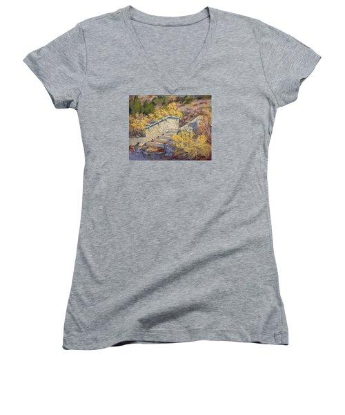 Morning Quail  Women's V-Neck T-Shirt (Junior Cut) by Jane Thorpe