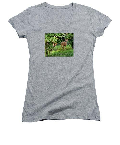 Morning Visitors Women's V-Neck T-Shirt