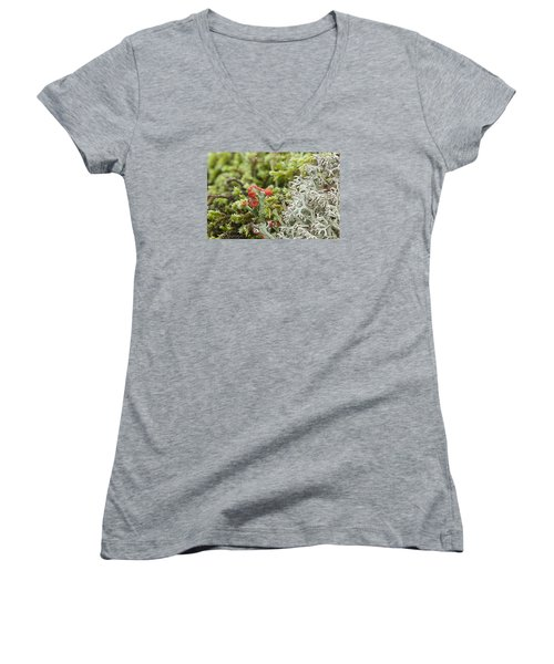 Mossy Forest Women's V-Neck T-Shirt