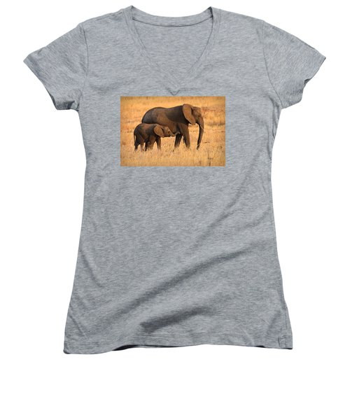 Mother And Baby Elephants Women's V-Neck