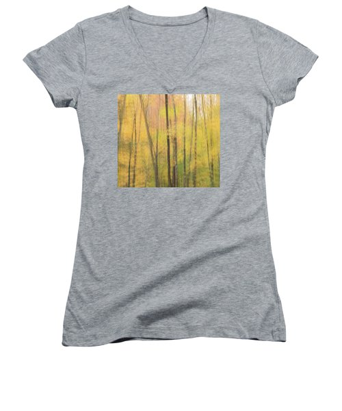 Motion In Color Women's V-Neck