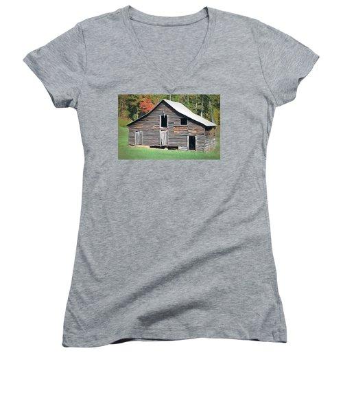 Mountain Barn Women's V-Neck T-Shirt (Junior Cut) by Marion Johnson