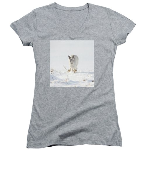 Mountain Hare Approaching Women's V-Neck
