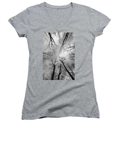 Mountain Lakes Nature Preserve Women's V-Neck (Athletic Fit)