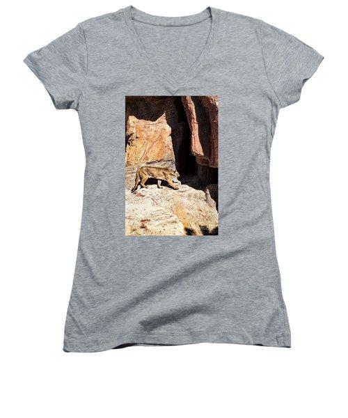 Mountain Lion Women's V-Neck T-Shirt (Junior Cut)
