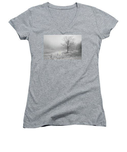Mountain Mist Women's V-Neck T-Shirt (Junior Cut) by William Beuther