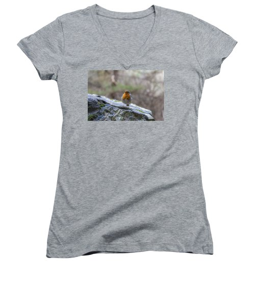 Mountain Robin Women's V-Neck (Athletic Fit)