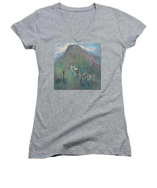 Mountain Visit Women's V-Neck (Athletic Fit)
