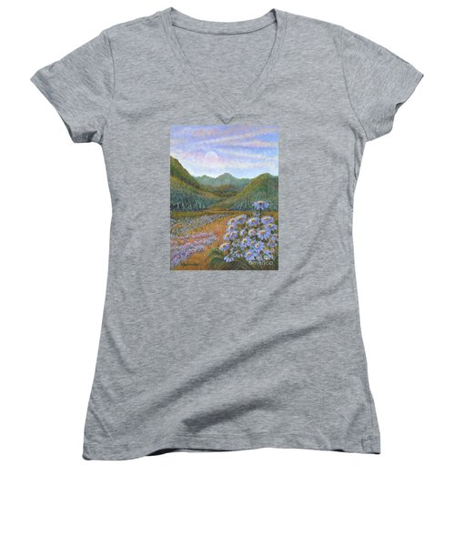 Mountains And Asters Women's V-Neck T-Shirt (Junior Cut) by Holly Carmichael