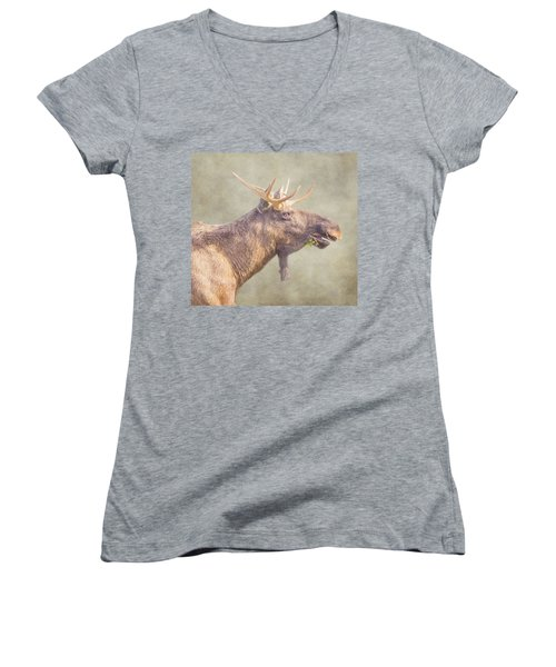 Mr Moose Women's V-Neck T-Shirt (Junior Cut) by Roy McPeak