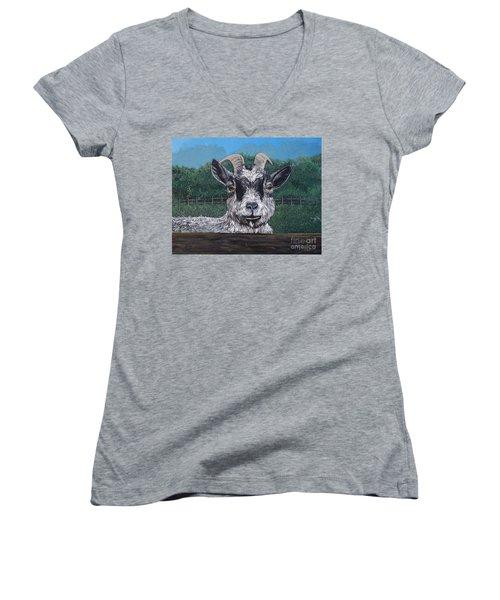 Ms Frisky  Women's V-Neck T-Shirt (Junior Cut) by Reb Frost