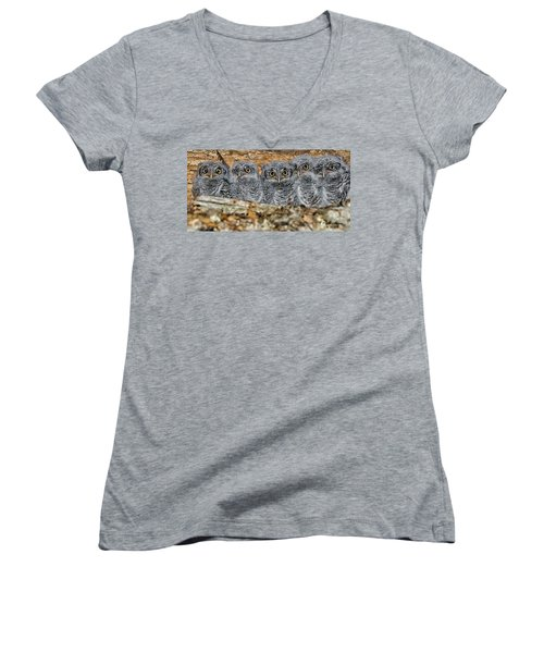 Mt. Rushmore Mimics Women's V-Neck (Athletic Fit)