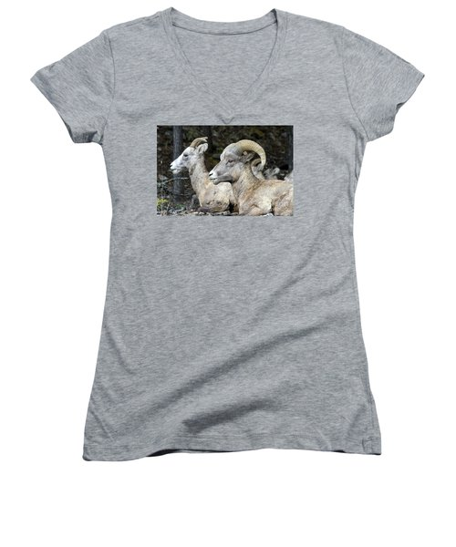Mt Sheep  Women's V-Neck