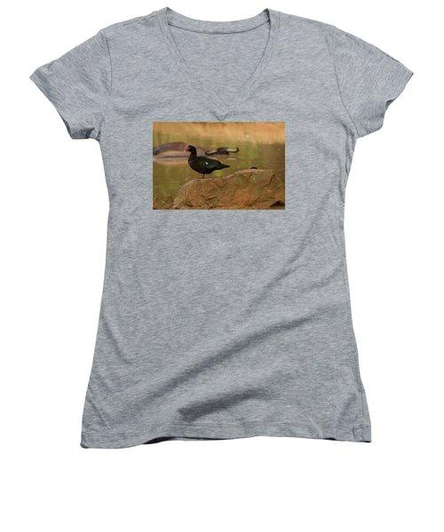 Muscovy Duck Women's V-Neck T-Shirt