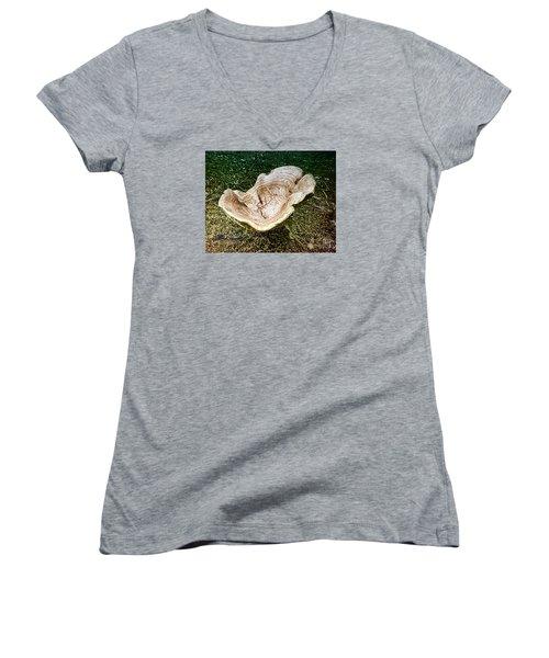 Mushroom  1 Women's V-Neck T-Shirt (Junior Cut) by Melissa Messick