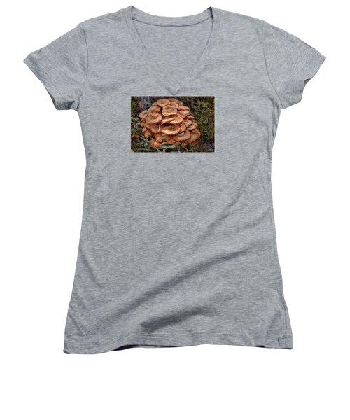Mushroom Bouquet Women's V-Neck T-Shirt (Junior Cut) by Rick Friedle