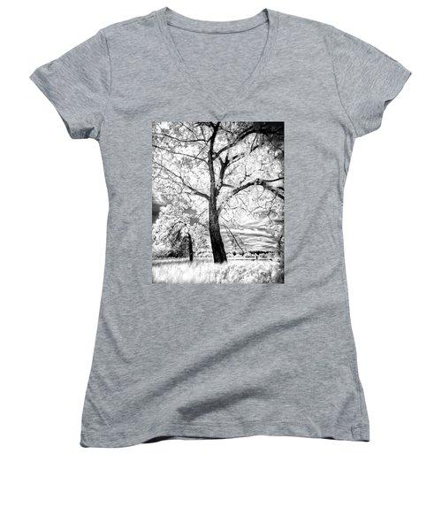 Music Moves The Soul Women's V-Neck T-Shirt