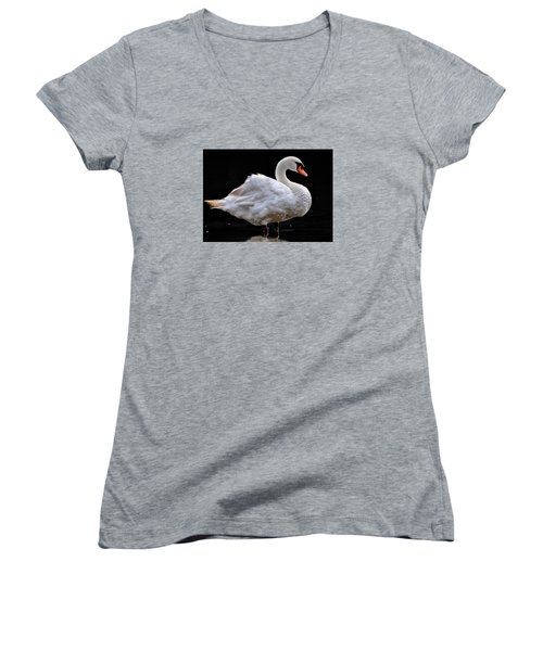 Mute Swan 3 Women's V-Neck (Athletic Fit)