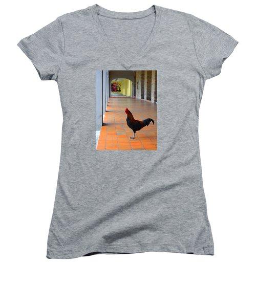 My Colonnade Women's V-Neck T-Shirt