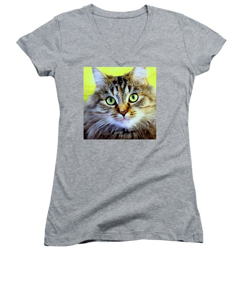 My Sweet Lil Beast Women's V-Neck (Athletic Fit)