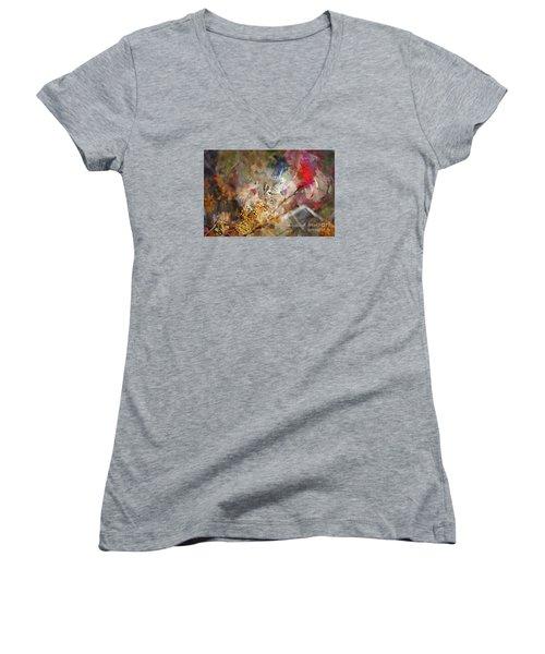 Myrtle Warbler Four Women's V-Neck T-Shirt