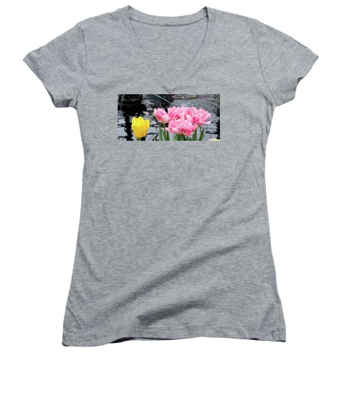 Myself, With Friends Women's V-Neck T-Shirt