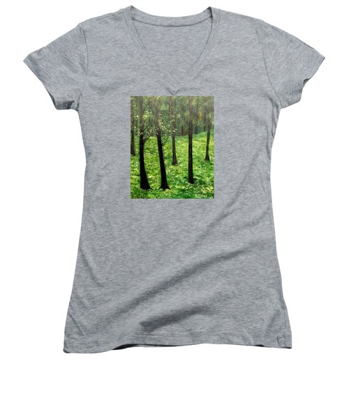 Mysterious Women's V-Neck (Athletic Fit)