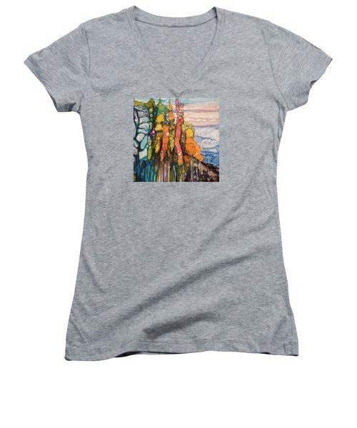 Mystical Garden Women's V-Neck T-Shirt (Junior Cut) by Suzanne Canner