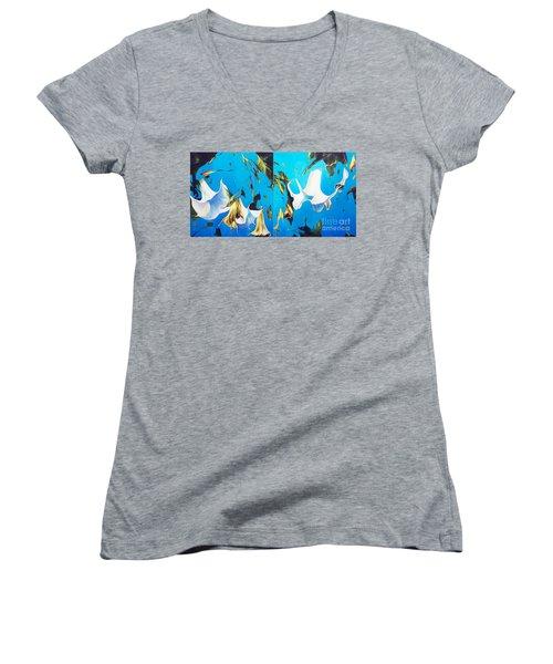 Mysticoblue Women's V-Neck T-Shirt