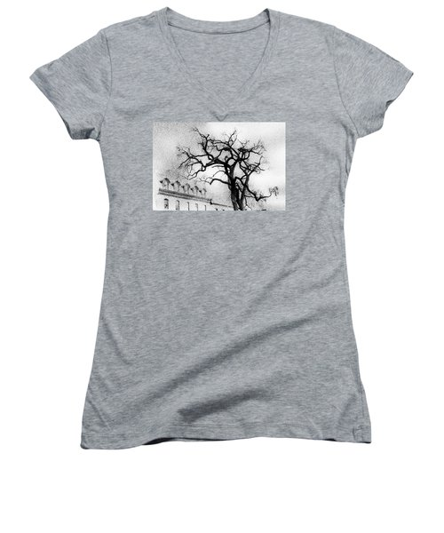 Naked Tree Women's V-Neck T-Shirt (Junior Cut) by Celso Bressan