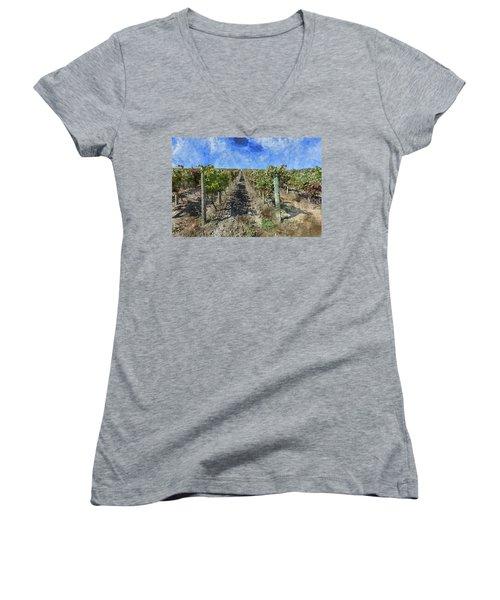 Napa Valley Vineyard - Rows Of Grapes Women's V-Neck T-Shirt