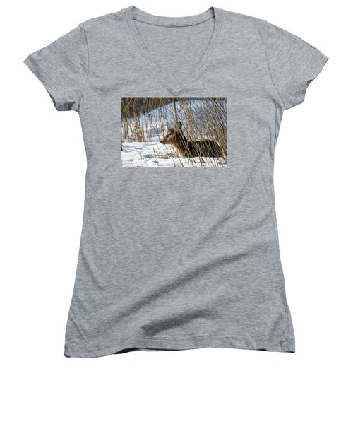 Napping Fawn Women's V-Neck T-Shirt (Junior Cut) by Brook Burling