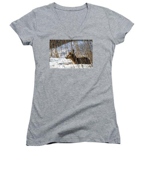 Napping Fawn Women's V-Neck T-Shirt