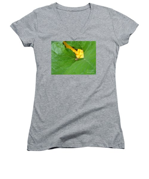Narrow Leaf Gorge Women's V-Neck
