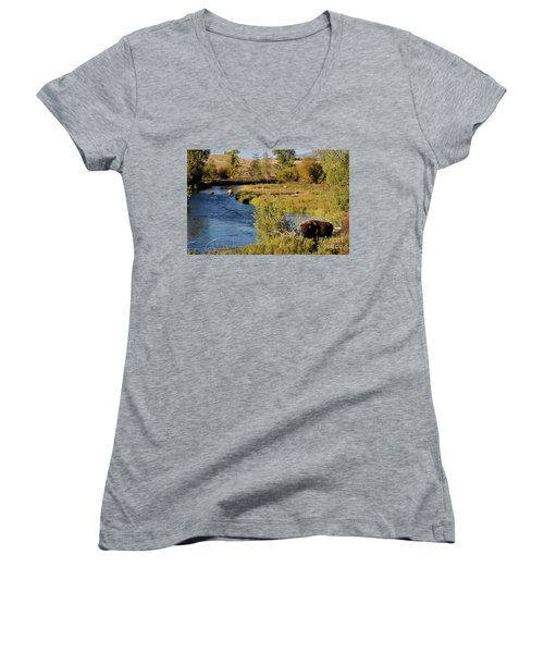 National Bison Range Women's V-Neck T-Shirt (Junior Cut) by Cindy Murphy - NightVisions