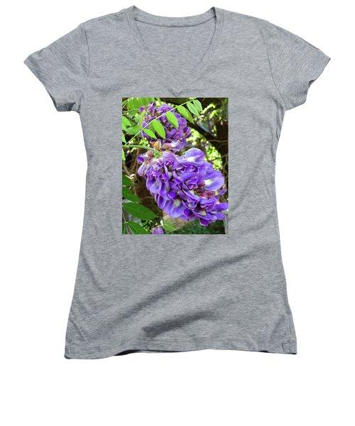 Native Wisteria Vine II Women's V-Neck T-Shirt