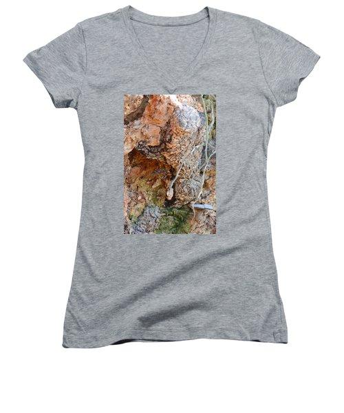 Natural Abstract 15-03 Women's V-Neck T-Shirt