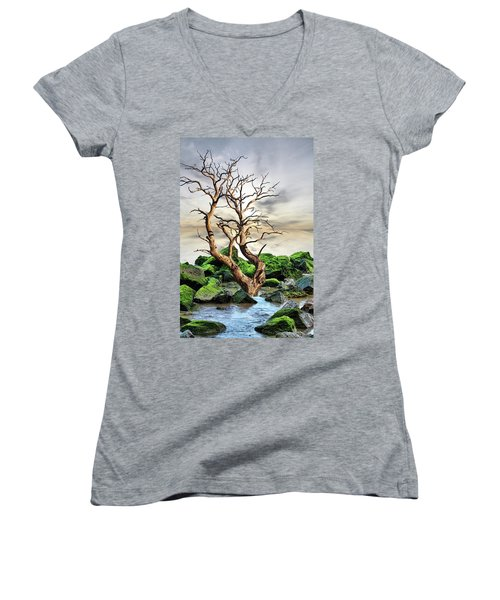 Natural Surroundings Women's V-Neck T-Shirt
