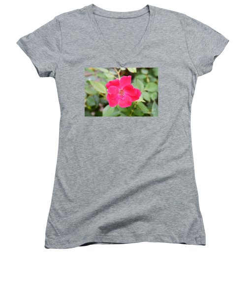 Women's V-Neck T-Shirt (Junior Cut) featuring the photograph Nature - Colorful Flower Gifts  by Ray Shrewsberry