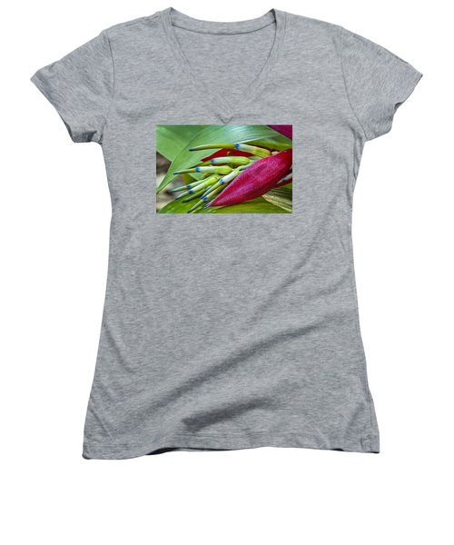 Nature In Bloom Women's V-Neck (Athletic Fit)