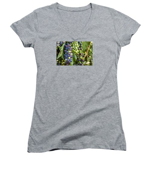Natures Colors In Wine Grapes Women's V-Neck