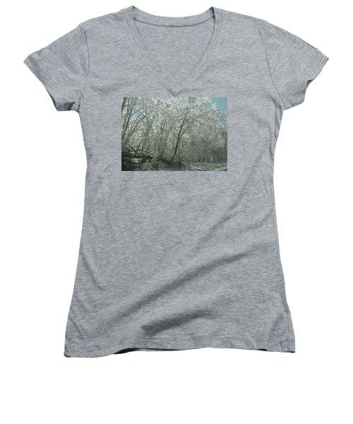Women's V-Neck T-Shirt (Junior Cut) featuring the photograph Nature's Frosting by Ellen Levinson